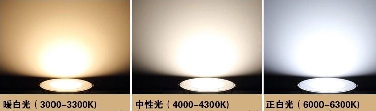 or COB White/White/Cold LED 9