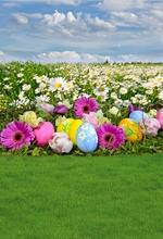 hot deal buy laeacco green spring easter eggs colorful flower grass blue sky  baby child scenic photo backdrop photo backgrounds photo studio