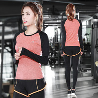 New spring activities yoga clothing two sets of long sleeved sportswear female fitness running fast dry suit