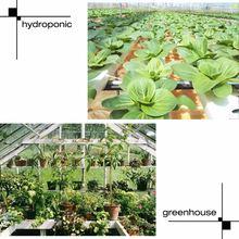 LED Plant Grow Light Lamp Full Spectrum 25W For Flower Seeds Greenhouse Indoor MJJ88