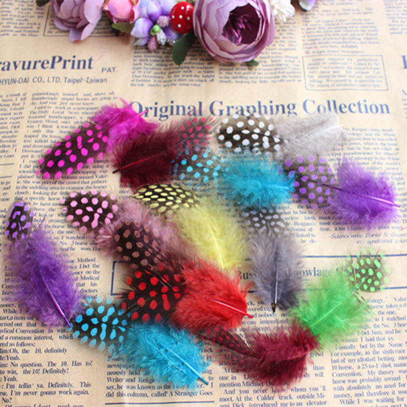 600pcs Guinea Fowl Spotted Feather Craft Chicken Feather Beautiful Gull Hair Extension Feathers for Home Decor Length 5-10cm