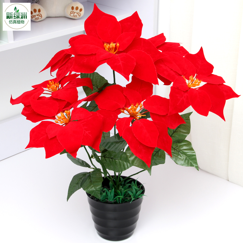 Canada Goose mens sale price - Online Buy Wholesale artificial anthurium from China artificial ...