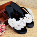 2016 Лето тапочки вьетнамки женщины сандалии женское сопротивления сандалии желе сандалии тапочки D456 босоножки женские обувь женская  шлепкиD456