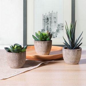 Image 5 - Mini bonsaï artificiel plantes succulentes