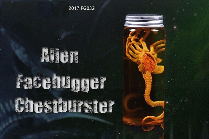1//6 FG044-A Fire Girl Toys Xenomorph Egg Doll Facehugger Chestburster Alien toys