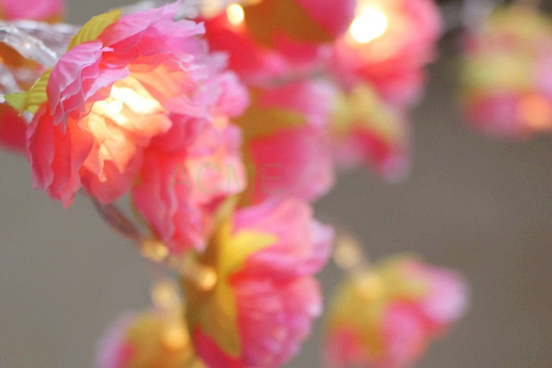 Silk Flower lights 6