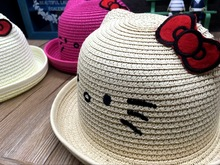 Summer Cat Character  Straw Kids Girl
