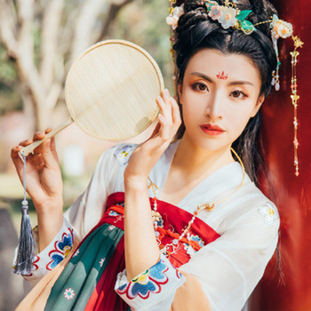 Women Hanfu Traditional Chinese Dance Costume Oriental Performance Clothing Folk Stage Festival Outfit Han Dynasty Wear DC2357