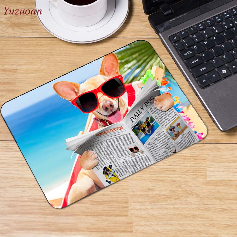 1Dogs_Chihuahua_Glasses_Newspaper_Tongue_Funny_549507_1280x853