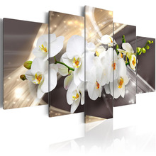 5 Pieces HD Wall Art Beautiful white orchid flower abstract exquisite background Home Decoratives Paintings Framed PJMT- (29)