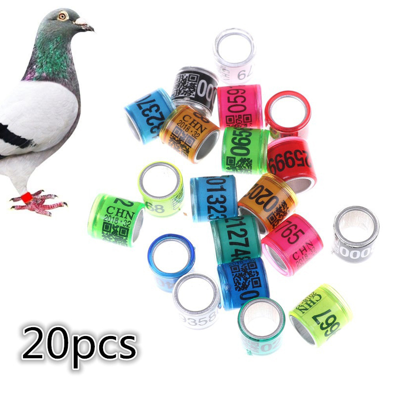 Bird Foot Rings Pet Products Open-Minded 20pcs Pigeon Leg Rings Identify Dove Bands 8mm Plastic With Al Gb Rings Pigeon Training Supplies Aluminium Rings For Pigeons To Ensure Smooth Transmission