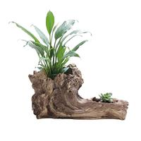 BESTOYARD Simulation Tree Root Succulent Plant Pot Garden Planting Pots Outdoor Botanic Flower Pot