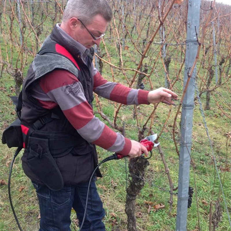 Electric tree secateurs pruner, electric pruning shears all day long working garden pruner,battery pruner for grape,apple tree