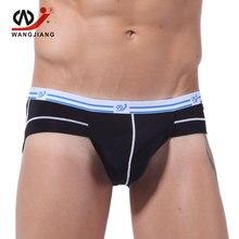 Mens Silk Bikini Underwear Transparent Mens Underwear Nylon Briefs Ropa Interior