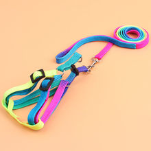 Pet Cat Dog Kitten Adjustable Colorful Harness Lead Leash Collar Belt Pet Shop Cat Acessorios Leash For Cats collar perro L*5(China)