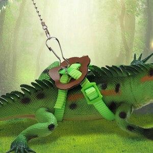 Bearded Dragon Gecko Reptile S