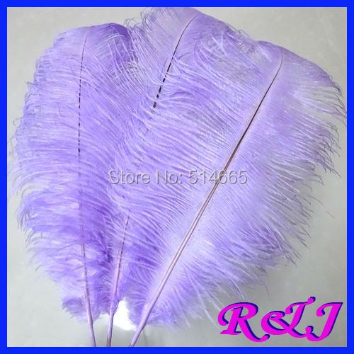 EMS Free shipping Cheap ostrich feather 100pcs 20-22 inches 50-55cm - Arts, Crafts and Sewing - Photo 1
