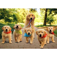 Dog family diy diamond painting group full round daimond cats embroidery