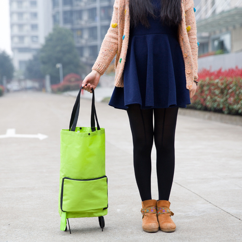 Do-Not-Miss-Folding-Portable-Shopping-Bags-High-Capacity-Shopping-Food-Organizer-Trolley-Bag-on-Wheels (2)