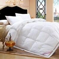 Korean 100% Cotton Soft Touch Comforter Golden Embellishment Duvet Goose Down Quilt Ruffle White Pink Camel #192