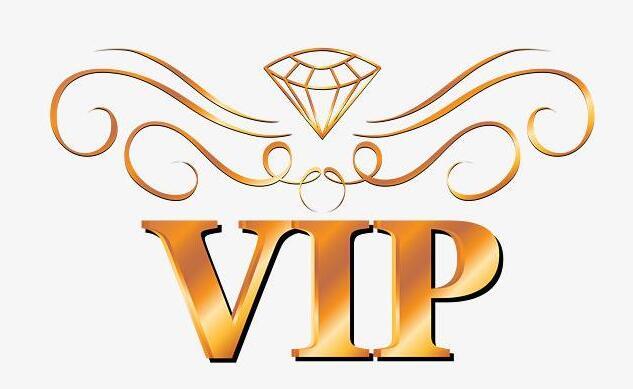 游戲磚廠VIP會員服務解釋說明