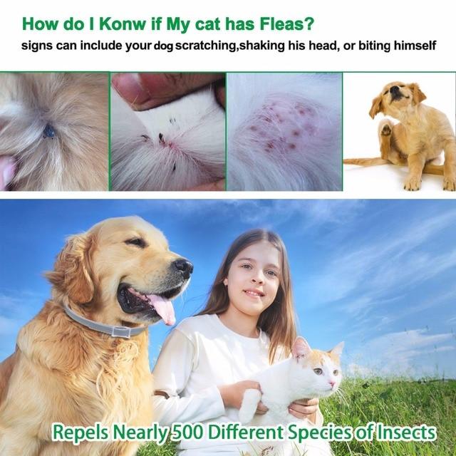 Waterproof Dog Collar Anti Flea Mosquitoes 1