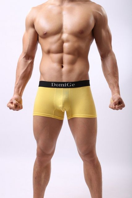 Domige Men Underwear Geronimo Sexy Net Boxer Black Yellow M/L/XL/2XL/3XL 5038