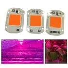 110V 220V Full Spectrum Light-Free Plant Light 20W 30W 50W Aluminum Substrate Superconducting Plate hot