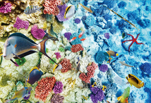 Laeacco Sea Underwater Coral Fish Scenic Photographic Backgrounds Customized Photography Backdrops For Photo Studio