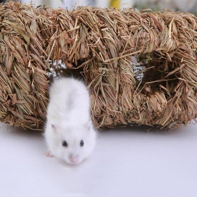 Molar-herbe Hamster à main | Jouets danimaux domestiques, Cages pour Chinchilla/ Hamster/cochons dinde, aire de jeux pour petits animaux, 2019