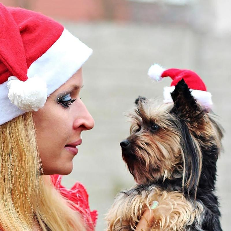 Winter Dog Red Santa Claus Christmas Hats Warm Puppy Hat Cap With