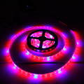 1pcs Full Spectrum LED Grow Strip Light SMD5050 1/2/3/4/5M Led Lamps for Plants Flowering Growing Aquarium Lighting +Led Driver