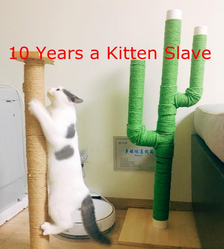 Cactus DIY Cat Tree