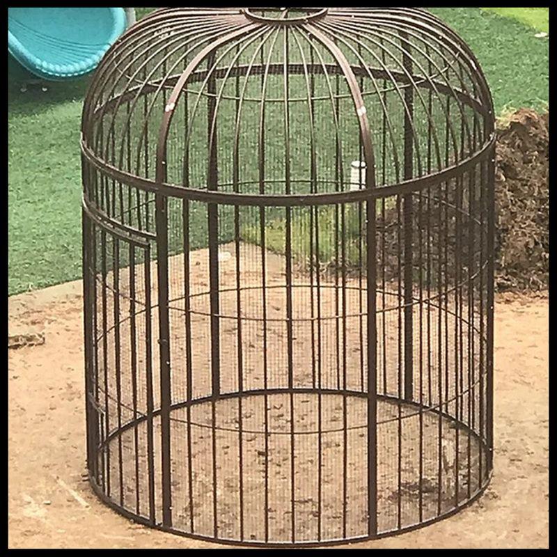 ironbirdcage-S0299