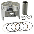 Motorcycle +50 Bore 49.5 mm Piston & Piston Ring Kit for Suzuki GSX250 GSX250R GSF250 BANDIT 250 ACCROSS 913 GJ72A GJ73A GJ74A