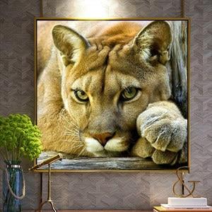 Image 3 - Meian, pintura de leão animal diy, bordado, bordado branco completo, ponto cruz, kits, ponto cruz 14ct, conjuntos para bordados, vs 41