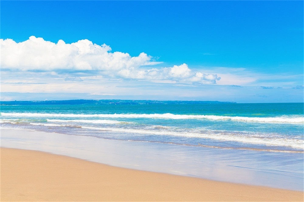 Laeacco Beach Blue Sky Clouds Scenic Baby Photography Backgrounds Customized Photographic Backdrops For Photo Studio