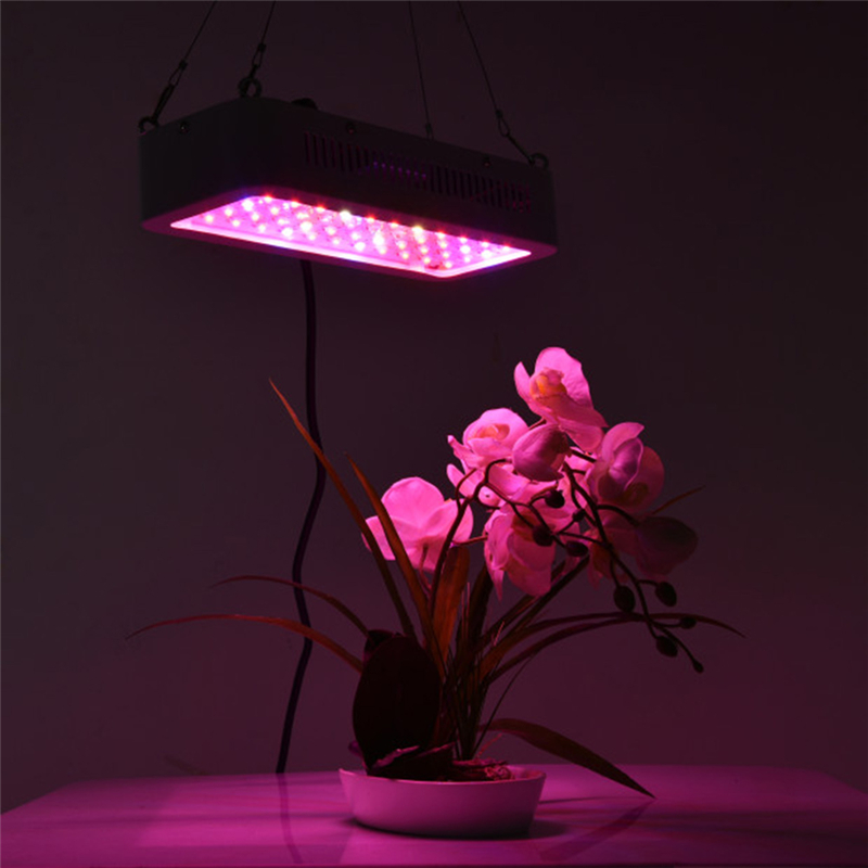 LAIDEYI 600W 60LED High Power Double Chips Plant Lamp Full Spectrum LED Greenhouse Plant Aquarium Flower Grow Light Indoor Light