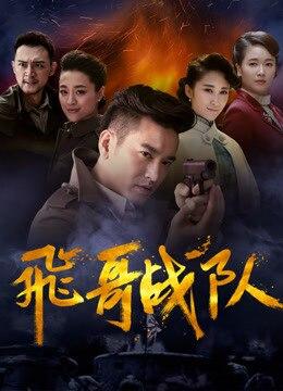 《飞哥大英雄2之飞哥战队》2017年中国大陆剧情,战争电视剧在线观看