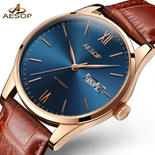 AESOP Sport Business Watch Men Automatic Mechanical Watches Leather Fashion Waterproof Male Clock Top Brand Luxury