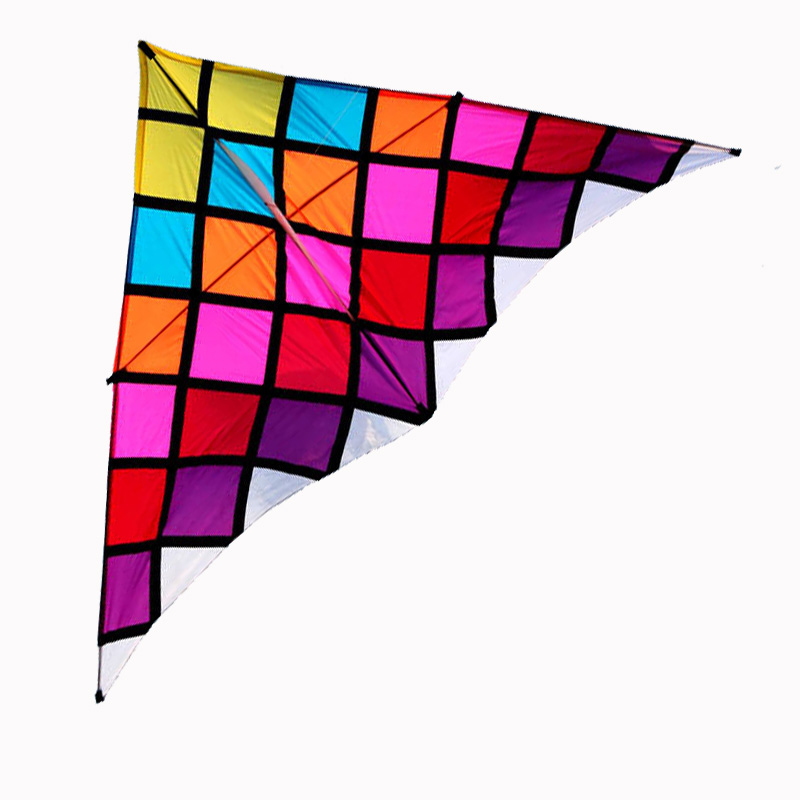 Professional Kite 2 5m Magic Square Delta Kite And Power Kites With Flying Tools and Line