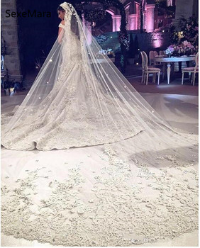 New Champagne Bridal Veil Cathedral Length 3M One Tier Lace Applique Edge Soft Netting Romantic Wedding with Comb