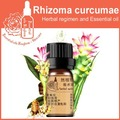 100% pure plant Herbal medicine oils Aeruginous Turmeric Rhizome  herbal oil 5ml Rhizoma curcumae Zedoary turmeric oil