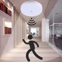 Led Ceiling Light Lamp with Motion Sensor Lights PIR Night Light 220V Surface Mount Fixtures for Home Lighting Living Room Stair