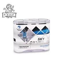 PEGASUS H4 100W Car Halogen Bulbs White Light 5000K 2100lm - Blue + Silver (12V / 2 PCS) dianzi h4 50 60w 1000 1300lm 5300k white light halogen car headlamp 12v 2 pcs