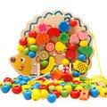 Envío gratis kids niños Erizo fruta cadena de perlas Ambliopía formación juguete bloques de Fruta de regalo