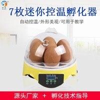 7 eier  kleine brüterei  familie brüterei  huhn und ente automatische lehre experiment inkubator.