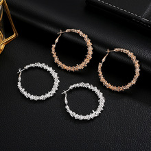 Europe and the United States simple irregular round earrings personality wild hot new alloy for women
