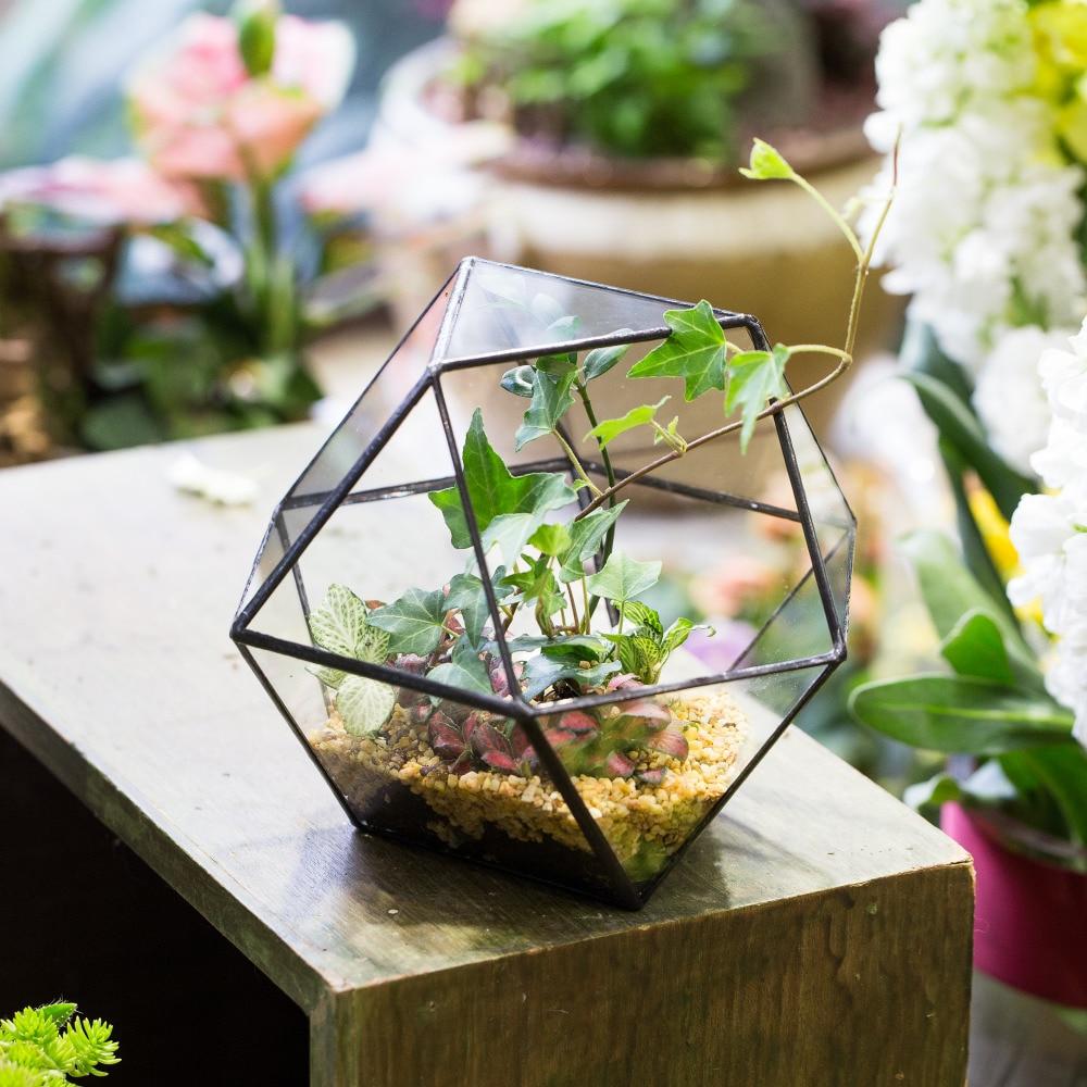 Indoor tabletop creative glass geometric terrarium plant for Plants de fleurs