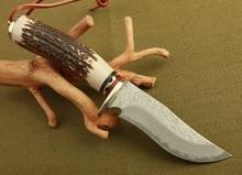 damascus steel knife blade hunting knife Antlers horn handle handmade damascus forged steel knife gift knife